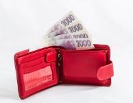 Pro půjčky do 10.000 Kč je charakteristické že se jedná o krátkodobé půjčky
